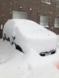 3011 初雪.jpg