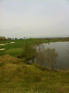 ゴルフ41