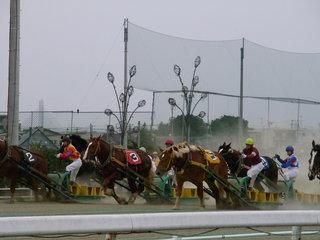 帯広競馬.JPG