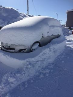 雪 ヴィッツ.jpg
